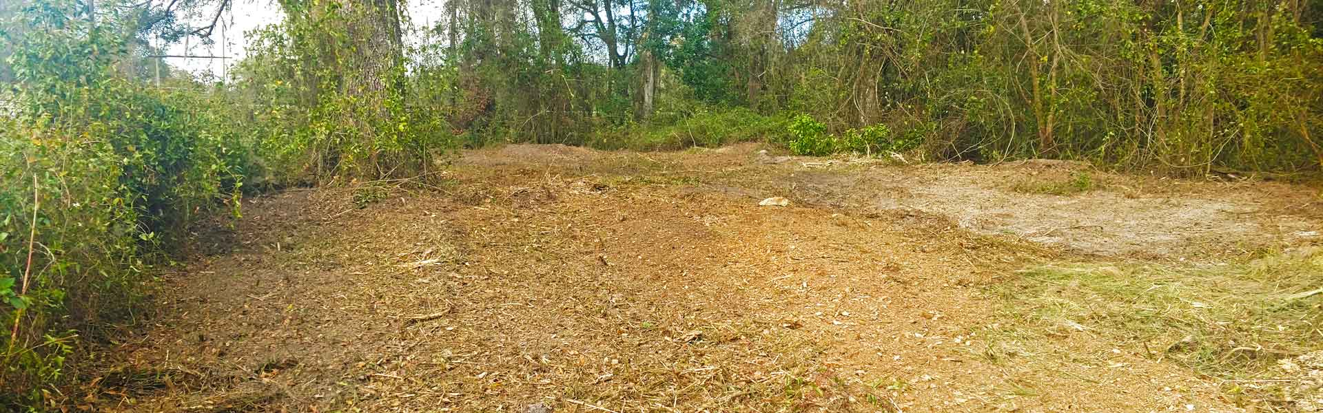 Wooded land in Florida cleared with Forestry Mulching service.