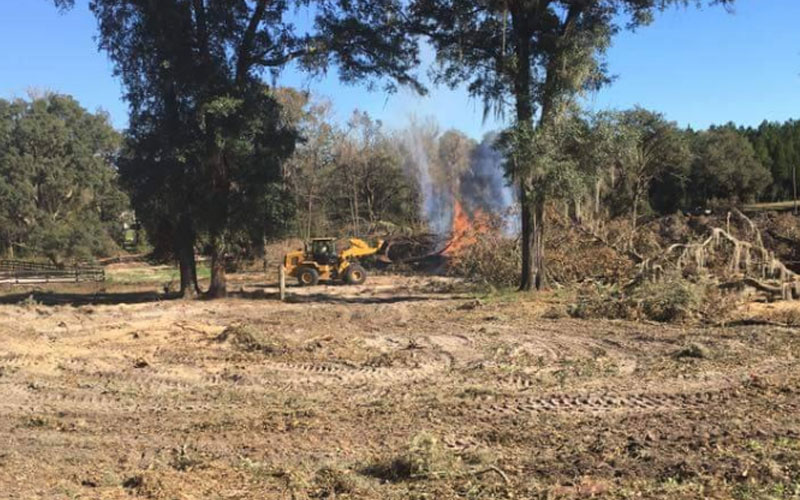 Florida Land Clearing Services & Lot Clearing | Reeves Land Services